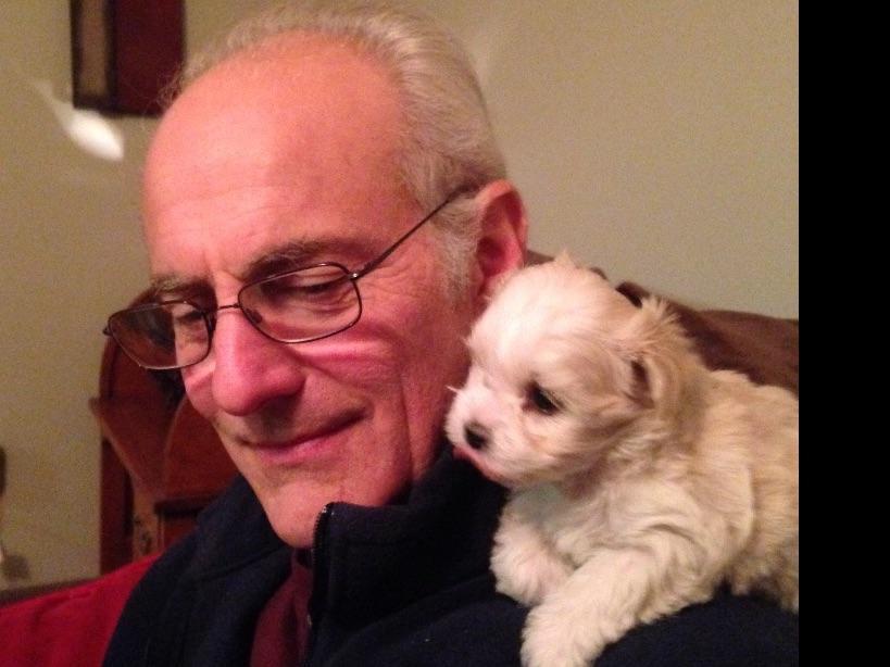 Van For Sale >> East Coast Havanese - Puppies For Sale